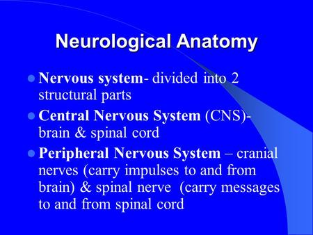 Neurological Anatomy Nervous system- divided into 2 structural parts Central Nervous System (CNS)- brain & spinal cord Peripheral Nervous System – cranial.