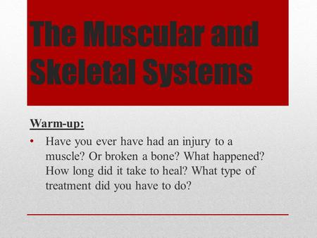 The Muscular and Skeletal Systems Warm-up: Have you ever have had an injury to a muscle? Or broken a bone? What happened? How long did it take to heal?