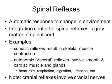 Spinal Reflexes Automatic response to change in environment Integration center for spinal reflexes is gray matter of spinal cord Examples –somatic reflexes.