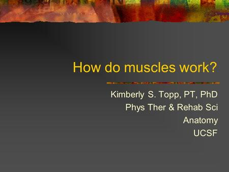 How do muscles work? Kimberly S. Topp, PT, PhD Phys Ther & Rehab Sci Anatomy UCSF.