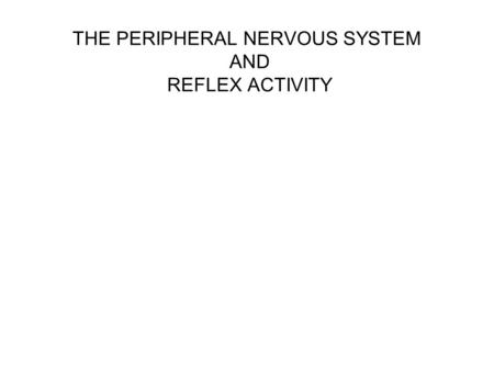 THE PERIPHERAL NERVOUS SYSTEM AND REFLEX ACTIVITY.