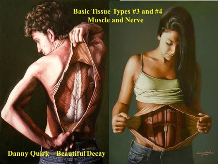 Basic Tissue Types #3 and #4 Muscle and Nerve Danny Quirk – Beautiful Decay.