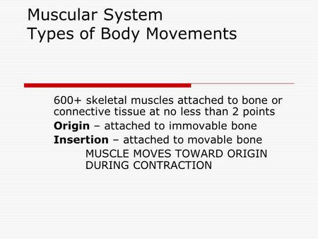 Muscular System Types of Body Movements