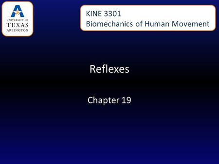 Reflexes Chapter 19 KINE 3301 Biomechanics of Human Movement.