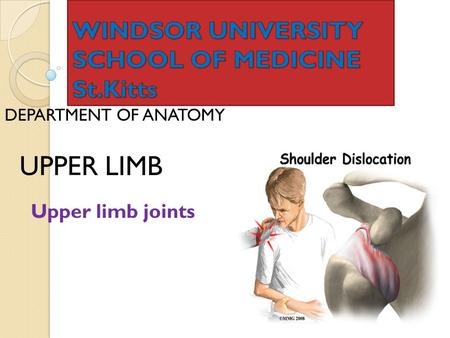 DEPARTMENT OF ANATOMY UPPER LIMB Upper limb joints.