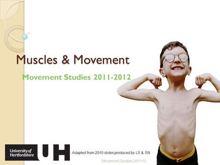 Muscles & Movement Movement Studies 2011-2012 Movement Studies 2011/12 Adapted from 2010 slides produced by LS & SN.