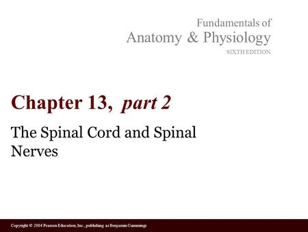 Copyright © 2004 Pearson Education, Inc., publishing as Benjamin Cummings Fundamentals of Anatomy & Physiology SIXTH EDITION Chapter 13, part 2 The Spinal.