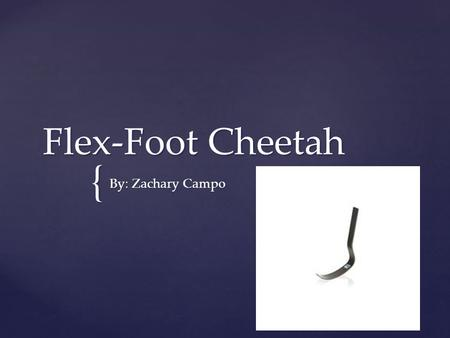 { Flex-Foot Cheetah By: Zachary Campo.  Prosthetics are artificial limbs used to replace a no longer existing limb.  The creation of prosthetics dates.