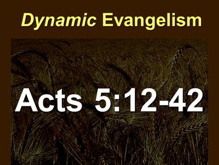 Dynamic Evangelism Acts 5:12-42. Dynamic Evangelism  Dynamic Evangelism occurs where the church is pure (12-14)
