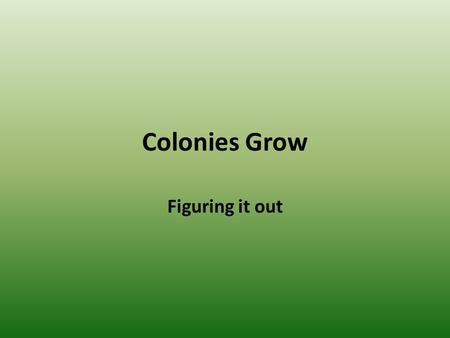 Colonies Grow Figuring it out.