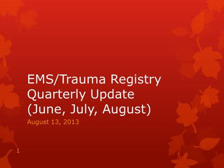 EMS/Trauma Registry Quarterly Update (June, July, August) August 13, 2013 1.