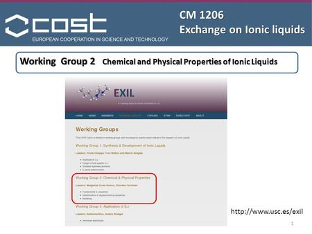 CM 1206 Exchange on Ionic liquids  Working Group 2 Chemical and Physical Properties of Ionic Liquids 1.