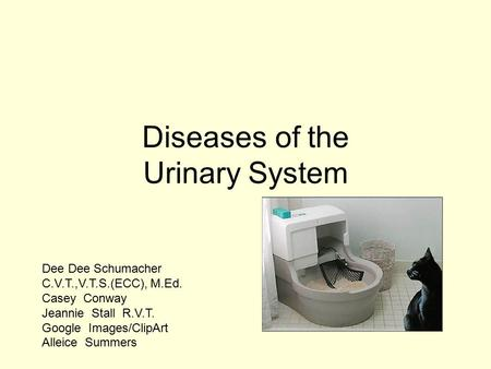 Diseases of the Urinary System Dee Dee Schumacher C.V.T.,V.T.S.(ECC), M.Ed. Casey Conway Jeannie Stall R.V.T. Google Images/ClipArt Alleice Summers.