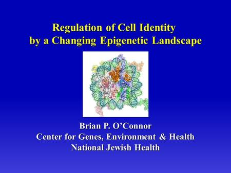Brian P. O'Connor Center for Genes, Environment & Health National Jewish Health Regulation of Cell Identity by a Changing Epigenetic Landscape.