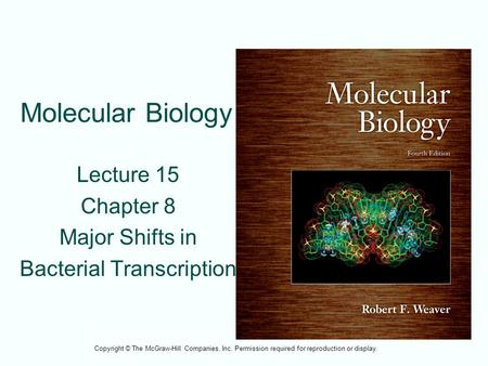 Molecular Biology Lecture 15 Chapter 8 Major Shifts in Bacterial Transcription Copyright © The McGraw-Hill Companies, Inc. Permission required for reproduction.