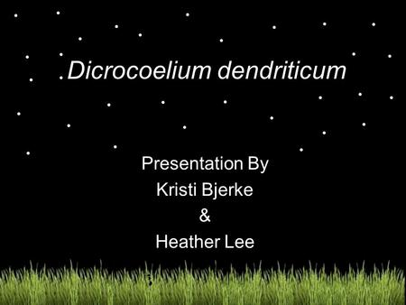 Dicrocoelium dendriticum Presentation By Kristi Bjerke & Heather Lee.