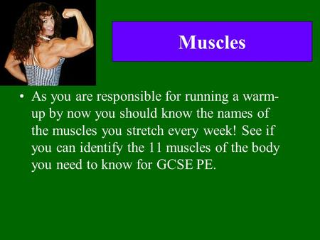 Muscles As you are responsible for running a warm- up by now you should know the names of the muscles you stretch every week! See if you can identify the.