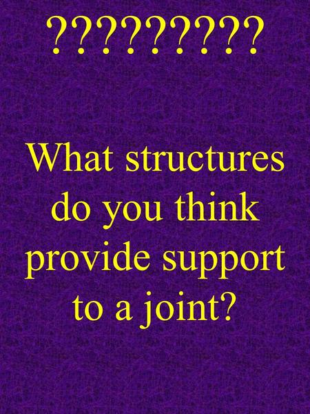 ????????? What structures do you think provide support to a joint?