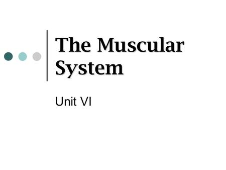 The Muscular System Unit VI.