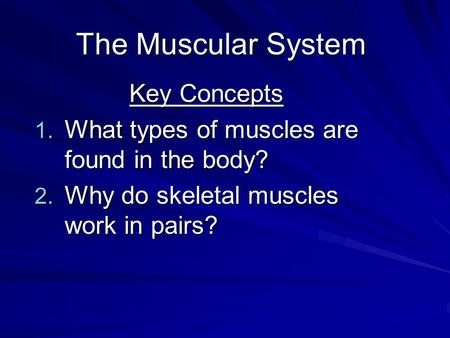 The Muscular System Key Concepts