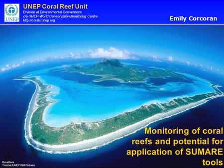UNEP Coral Reef Unit Division of Environmental Conventions c/o UNEP-World Conservation Monitoring Centre  Monitoring of coral reefs.