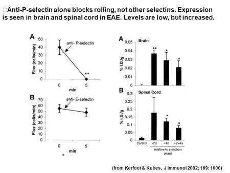 (from Kerfoot & Kubes, J Immunol 2002; 169: 1000) Anti-P-selectin alone blocks rolling, not other selectins. Expression is seen in brain and spinal cord.
