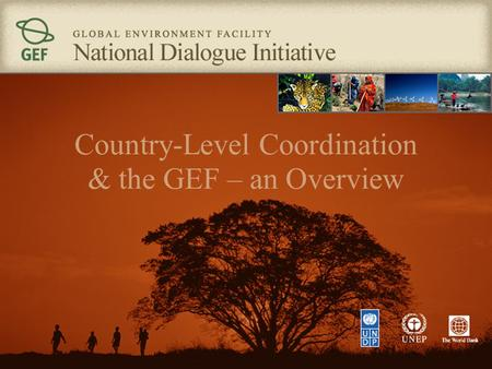 Country-Level Coordination & the GEF – an Overview.