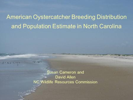 American Oystercatcher Breeding Distribution and Population Estimate in North Carolina Susan Cameron and David Allen NC Wildlife Resources Commission.