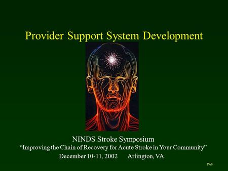 "Provider Support System Development NINDS Stroke Symposium ""Improving the Chain of Recovery for Acute Stroke in Your Community"" December 10-11, 2002Arlington,"