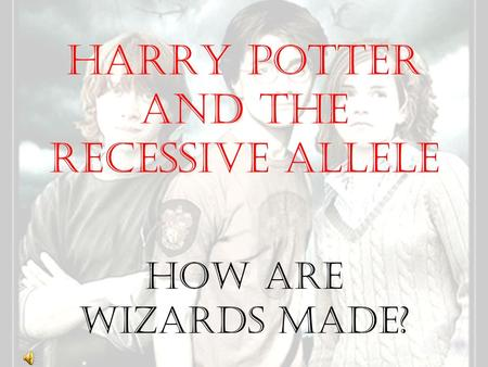 Harry Potter and the Recessive Allele How Are Wizards Made?