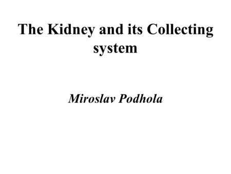 The Kidney and its Collecting system Miroslav Podhola.