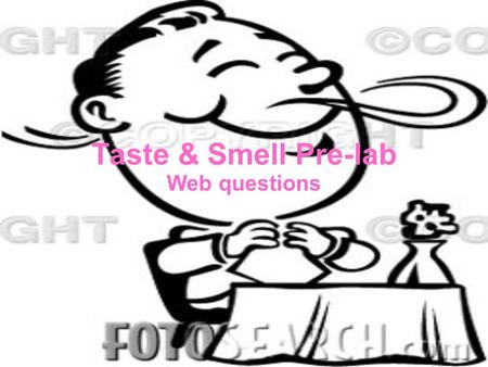 Taste & Smell Pre-lab Web questions.