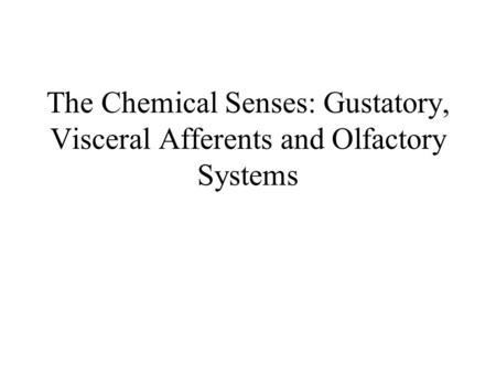 The Chemical Senses: Gustatory, Visceral Afferents and Olfactory Systems.