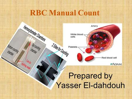 RBC Manual Count Prepared by Yasser El-dahdouh. HEMOCYTOMETER Hemo: blood Cyto: cell Meter: measurement/counter Thus, it is an instrument used to count.