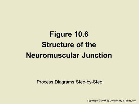 Figure 10.6 Structure of the Neuromuscular Junction Process Diagrams Step-by-Step Copyright © 2007 by John Wiley & Sons, Inc.