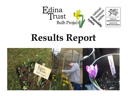Results Report. Super Scientists! The Edina Trust would like to thank everyone that worked so hard planting their bulbs, observing and sending in their.