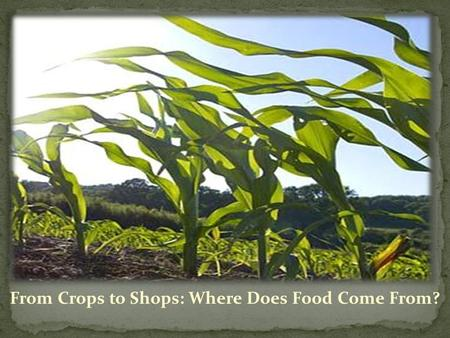 From Crops to Shops: Where Does Food Come From?. Application Process 3 of Weeks Professional Development 5 Week Externship.