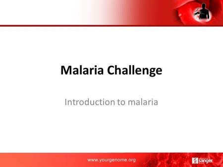Malaria Challenge Introduction to malaria. Malaria is a life threatening disease which is transmitted to humans through the bites of infected female Anopheles.