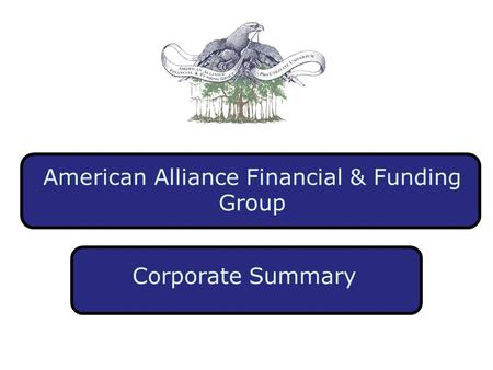 American Alliance Financial & Funding Group Corporate Summary.