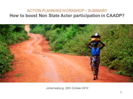 1 ACTION PLANNING WORKSHOP ~ SUMMARY How to boost Non State Actor participation in CAADP? Johannesburg, 20th October 2010.