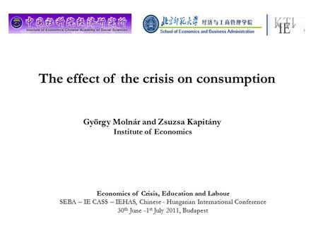The effect of the crisis on consumption György Molnár and Zsuzsa Kapitány Institute of Economics Economics of Crisis, Education and Labour SEBA – IE CASS.