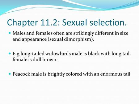 Chapter 11.2: Sexual selection. Males and females often are strikingly different in size and appearance (sexual dimorphism). E.g long-tailed widowbirds.