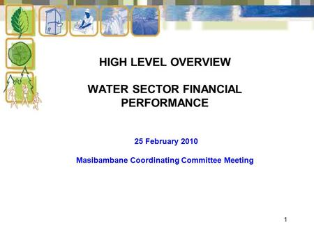 1 HIGH LEVEL OVERVIEW WATER SECTOR FINANCIAL PERFORMANCE 25 February 2010 Masibambane Coordinating Committee Meeting.