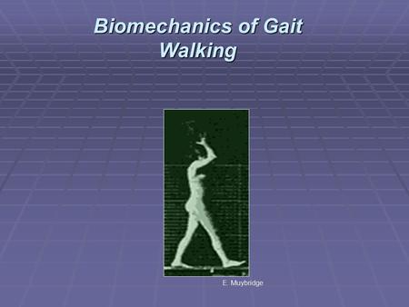 Biomechanics of Gait Walking E. Muybridge. Applications Walking as a Critical Fundamental Movement Pattern Walking as a Recreational Activity Walking.