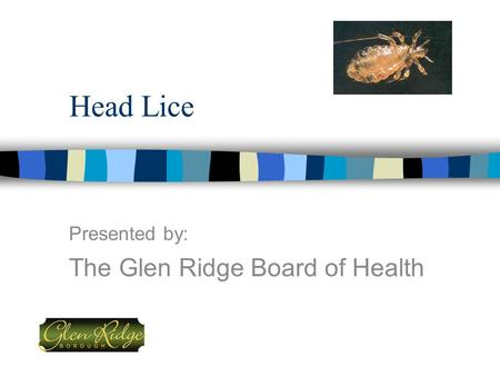 Head Lice Presented by: The Glen Ridge Board of Health.