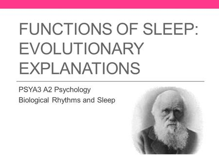 Functions of Sleep: Evolutionary Explanations