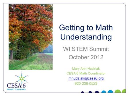 Getting to Math Understanding WI STEM Summit October 2012 Mary Ann Hudziak CESA 6 Math Coordinator 920-236-0523.