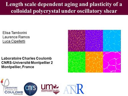 Length scale dependent aging and plasticity of a colloidal polycrystal under oscillatory shear Elisa Tamborini Laurence Ramos Luca Cipelletti Laboratoire.