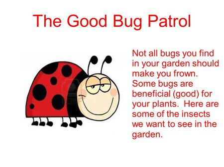 The Good Bug Patrol Not all bugs you find in your garden should make you frown. Some bugs are beneficial (good) for your plants. Here are some of the insects.