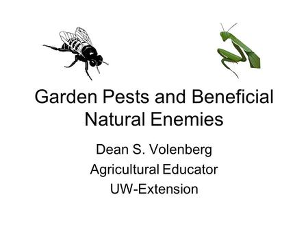 Garden Pests and Beneficial Natural Enemies Dean S. Volenberg Agricultural Educator UW-Extension.